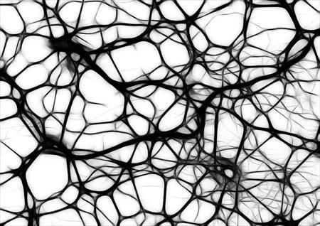 Alimentación y cambios en el cerebro