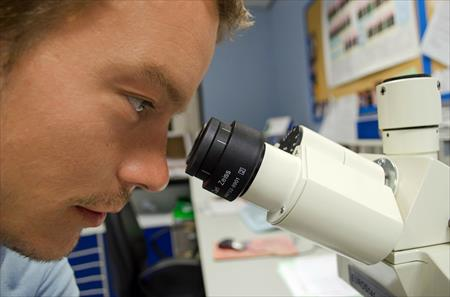 El papel de las células T reguladoras