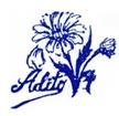 Asociación de Diabéticos de Toledo (ADITO)